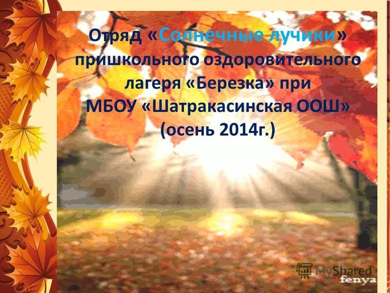 Отря д «Солнечные лучики» пришкольного оздоровительного лагеря «Березка» при МБОУ «Шатракасинская ООШ» (осень 2014 г.)