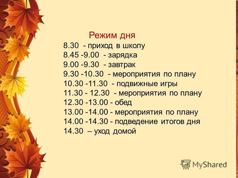 Режим дня 8.30 - приход в школу 8.45 -9.00 - зарядка 9.00 -9.30 - завтрак 9.30 -10.30 - мероприятия по плану 10.30 -11.30 - подвижные игры 11.30 - 12.30 - мероприятия по плану 12.30 -13.00 - обед 13.00 -14.00 - мероприятия по плану 14.00 -14.30 - под
