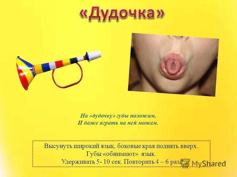 Высунуть широкий язык, боковые края поднять вверх. Губы «обнимают» язык. Удерживать 5- 10 сек. Повторить 4 – 6 раз. На «дудочку» губы положим, И даже играть на ней можем.