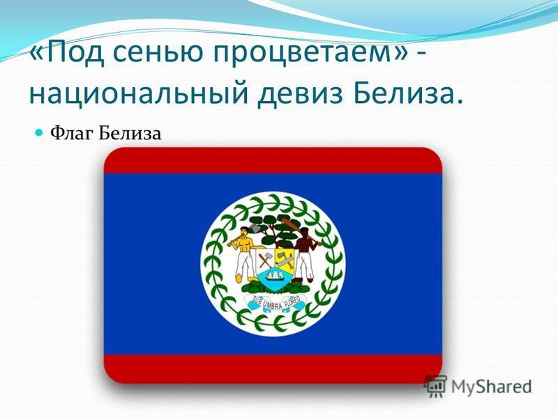 «Под сенью процветаем» - национальный девиз Белиза. Флаг Белиза