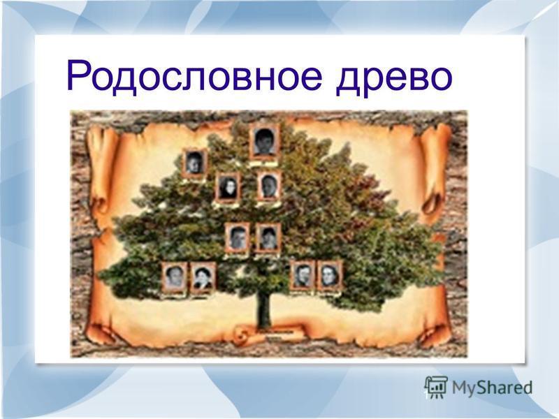 11 Родословное древо