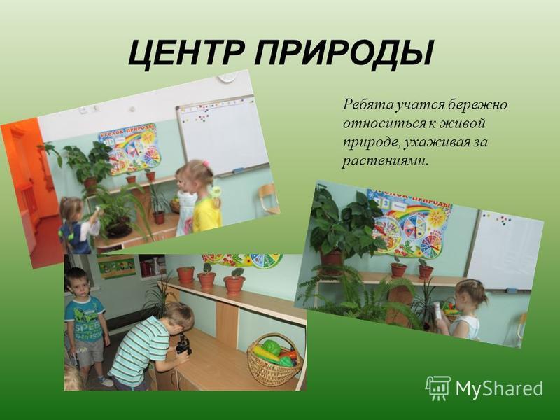 ЦЕНТР ПРИРОДЫ Ребята учатся бережно относиться к живой природе, ухаживая за растениями.