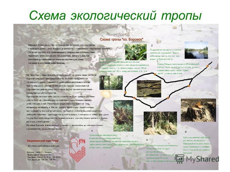 Схема экологический тропы