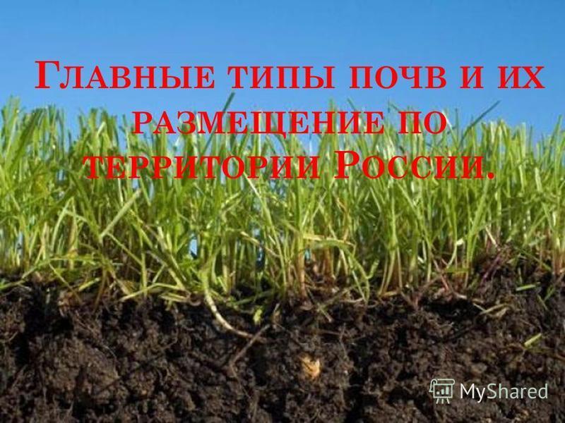 Г ЛАВНЫЕ ТИПЫ ПОЧВ И ИХ РАЗМЕЩЕНИЕ ПО ТЕРРИТОРИИ Р ОССИИ.