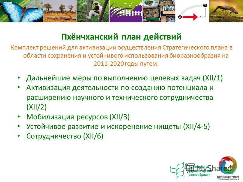 Комплект решений для активизации осуществления Стратегического плана в области сохранения и устойчивого использования биоразнообразия на 2011-2020 годы путем: Дальнейшие меры по выполнению целевых задач (XII/1) Активизация деятельности по созданию по