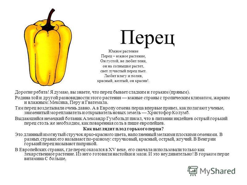 Перец Южное растение Перец – южное растение, Он густой, не любит тени, он на солнышке растет, свет лучистый перец пьет. Любит влагу и полив, красный, желтый, он красив!. Дорогие ребята! Я думаю, вы знаете, что перец бывает сладким и горьким (пряным).