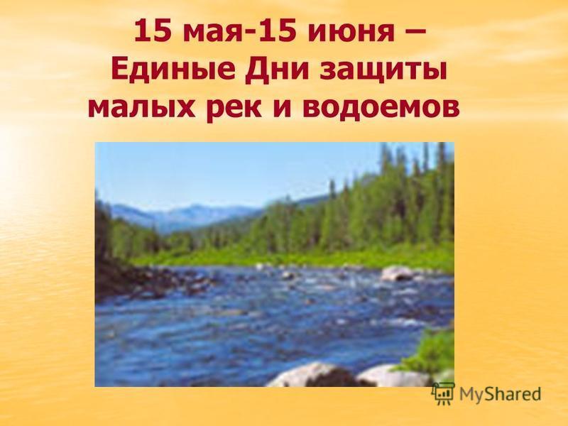 15 мая-15 июня – Единые Дни защиты малых рек и водоемов