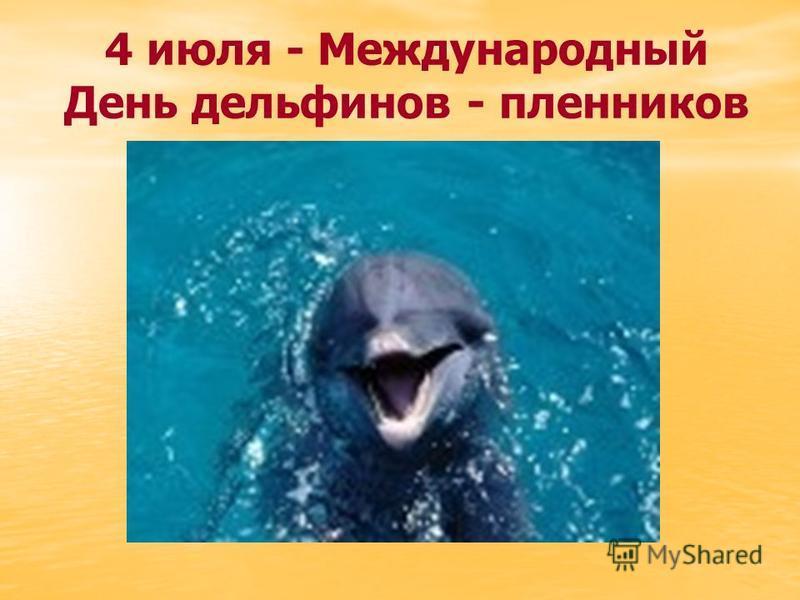 4 июля - Международный День дельфинов - пленников