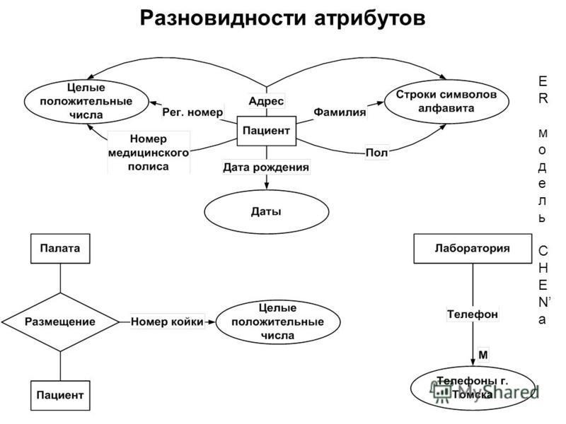 ERмодельCHENаERмодельCHENа Разновидности атрибутов