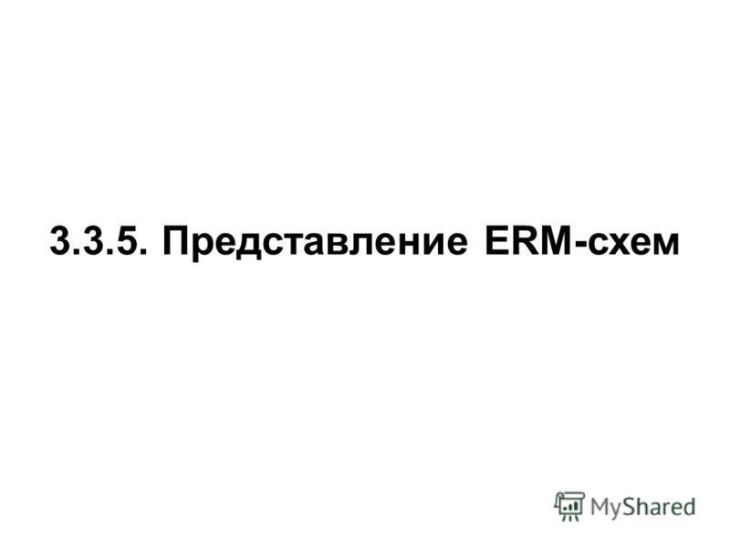 3.3.5. Представление ERM-схем