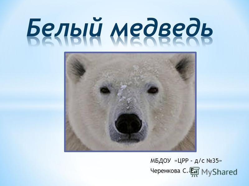 МБДОУ «ЦРР – д/с 35» Черенкова С. Е.