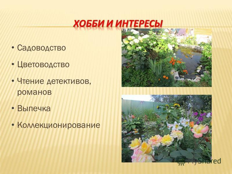 Садоводство Цветоводство Чтение детективов, романов Выпечка Коллекционирование