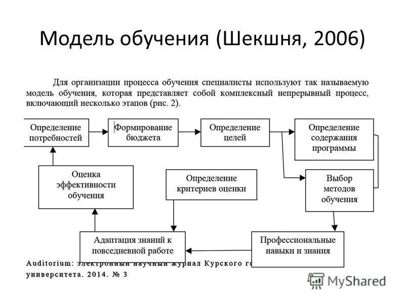 Модель обучения (Шекшня, 2006)