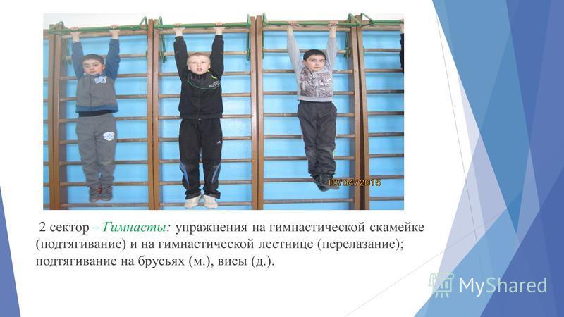 2 сектор – Гимнасты: упражнения на гимнастической скамейке (подтягивание) и на гимнастической лестнице (перелезание); подтягивание на брусьях (м.), висы (д.).