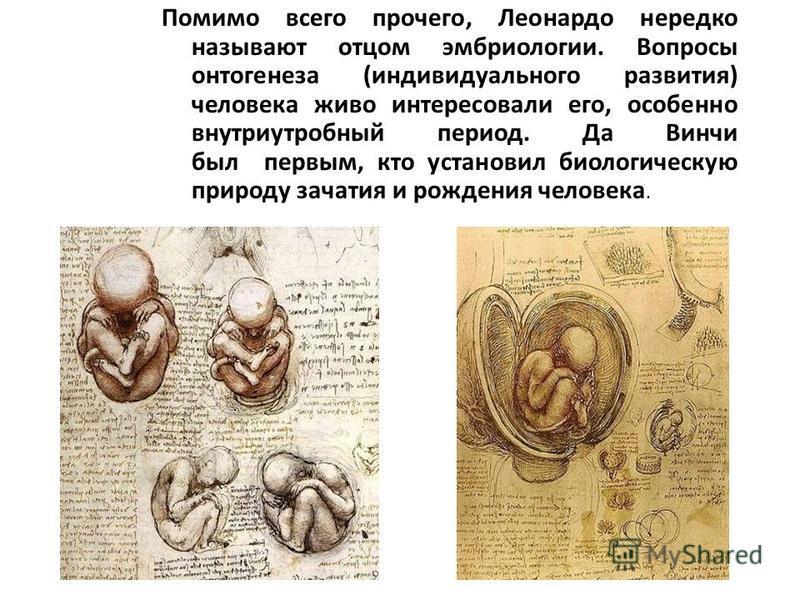 Помимо всего прочего, Леонардо нередко называют отцом эмбриологии. Вопросы онтогенеза (индивидуального развития) человека живо интересовали его, особенно внутриутробный период. Да Винчи был первым, кто установил биологическую природу зачатия и рожден