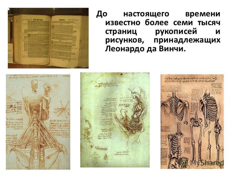 До настоящего времени известно более семи тысяч страниц рукописей и рисунков, принадлежащих Леонардо да Винчи.
