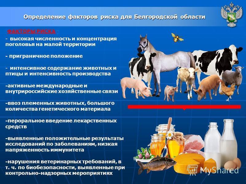 8 Определение факторов риска для Белгородской области ФАКТОРЫ РИСКА -высокая численность и концентрация поголовья на малой территории - приграничное положение -интенсивное содержание животных и птицы и интенсивность производства -активные международн