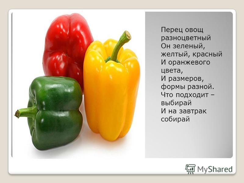 Перец овощ разноцветный Он зеленый, желтый, красный И оранжевого цвета, И размеров, формы разной. Что подходит – выбирай И на завтрак собирай