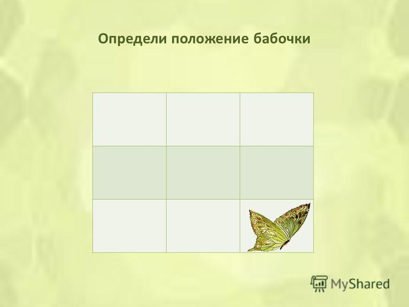 Определи положение бабочки