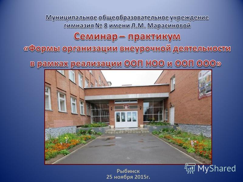 Рыбинск 25 ноября 2015 г.