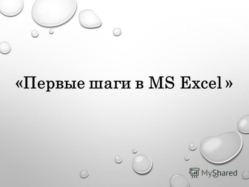 «Первые шаги в MS Excel »