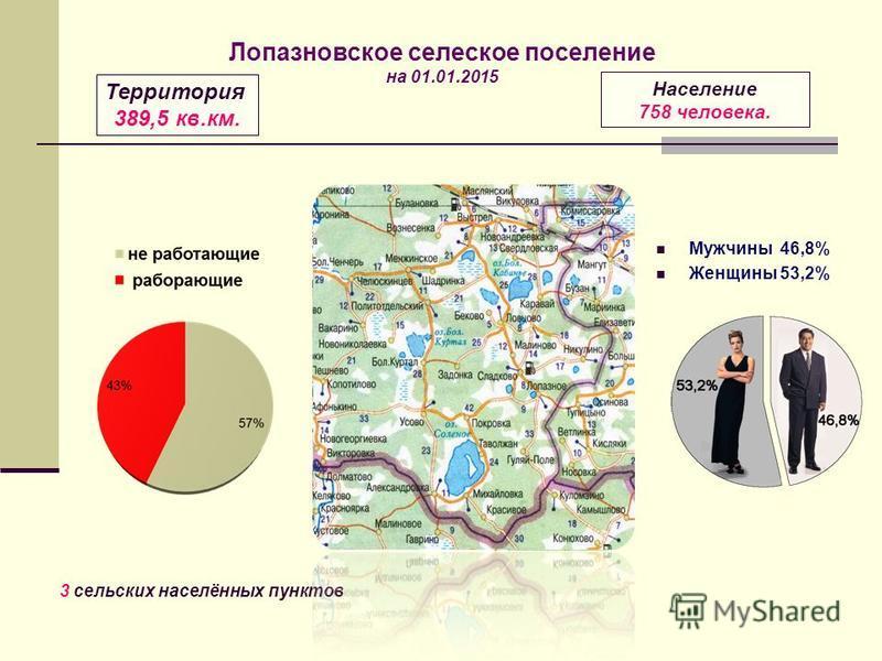 Мужчины 46,8% Женщины 53,2% Территория 389,5 кв.км. Население 758 человека. 3 сельских населённых пунктов Лопазновское сельское поселение на 01.01.2015