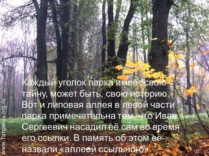 Каждый уголок парка имеет свою тайну, может быть, свою историю. Вот и липовая аллея в левой части парка примечательна тем, что Иван Сергеевич насадил её сам во время его ссылки. В память об этом её назвали «аллеей ссыльного».