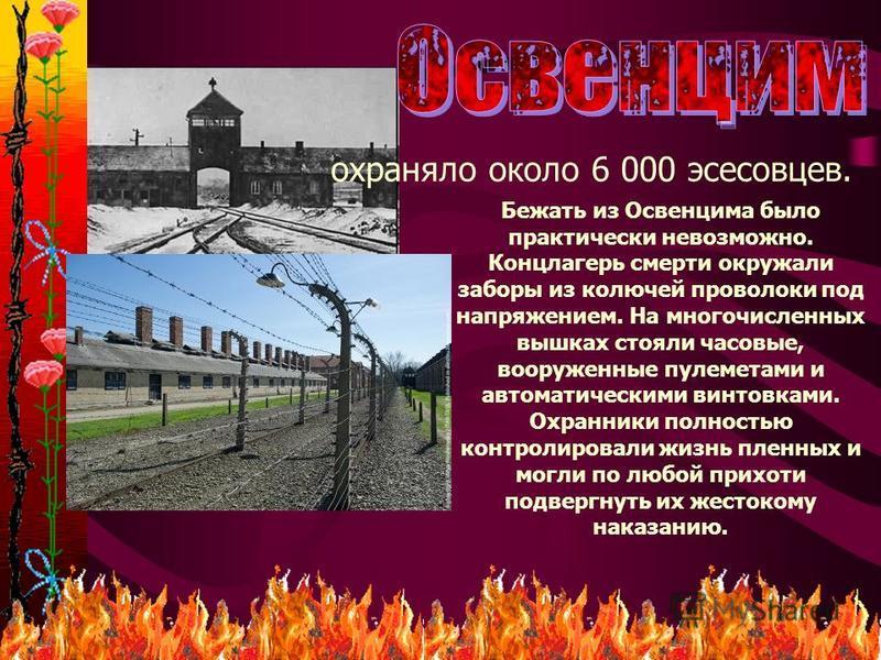 21 охраняло около 6 000 эсесовцев. Бежать из Освенцима было практически невозможно. Концлагерь смерти окружали заборы из колючей проволоки под напряжением. На многочисленных вышках стояли часовые, вооруженные пулеметами и автоматическими винтовками.
