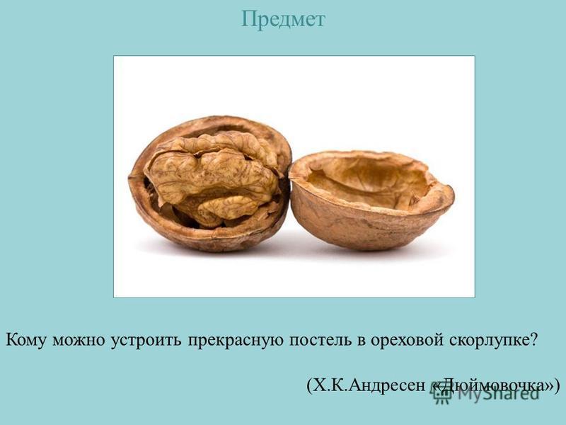 Предмет Кому можно устроить прекрасную постель в ореховой скорлупке? (Х.К.Андресен «Дюймовочка»)