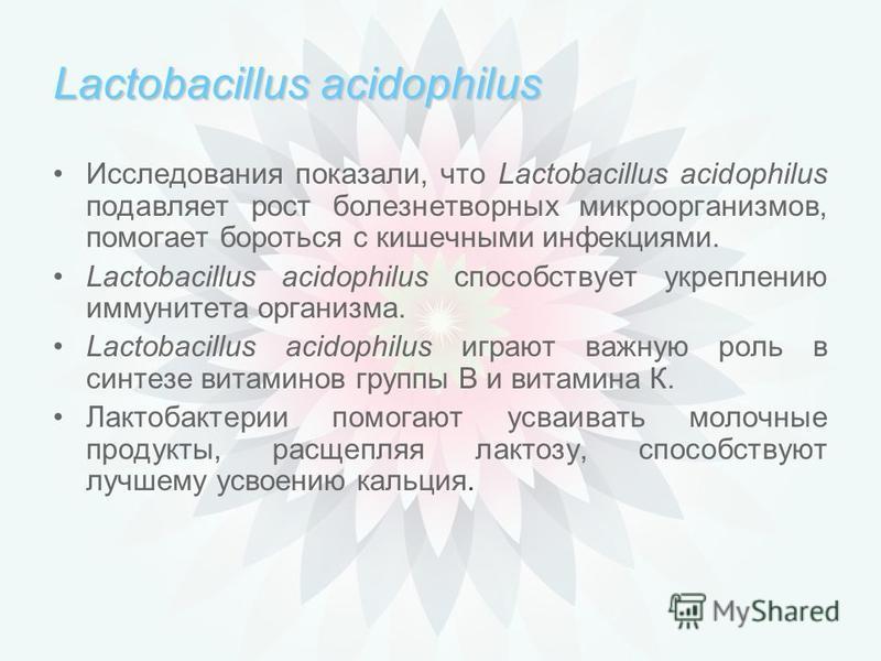 Lactobacillus acidophilus Lactobacillus acidophilus незаменимы при: нерациональном питании инфекционных и грибковых заболеваниях расстройствах желудочно-кишечного тракта приёме антибиотиков и противозачаточных таблеток химиотерапии ослабленной иммунн