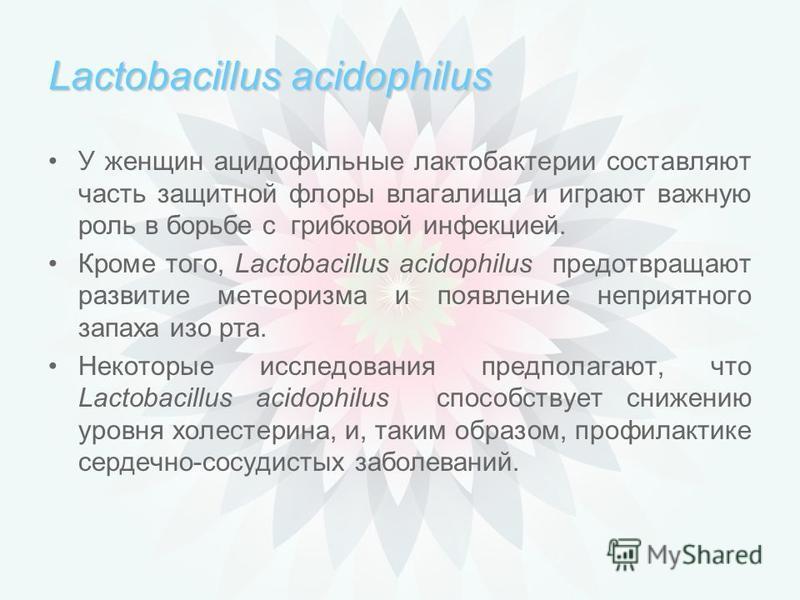 Lactobacillus acidophilus Исследования показали, что Lactobacillus acidophilus подавляет рост болезнетворных микроорганизмов, помогает бороться с кишечными инфекциями. Lactobacillus acidophilus способствует укреплению иммунитета организма. Lactobacil