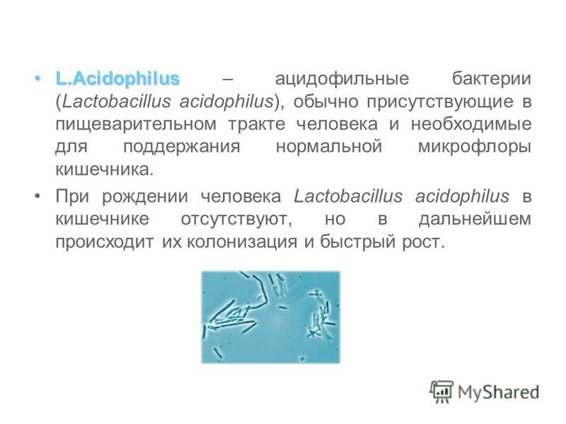 L.Acidophilus - Продукт компании Santegra® L.Acidophilus - источник «дружественных» лактобактерий для поддержания нормальной микрофлоры кишечника