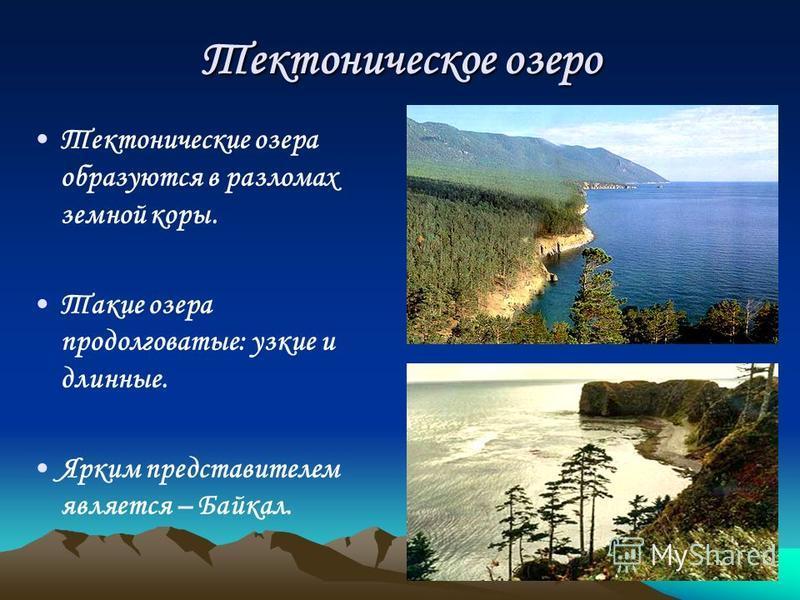 Тектоническое озеро Тектонические озера образуются в разломах земной коры. Такие озера продолговатые: узкие и длинные. Ярким представителем является – Байкал.