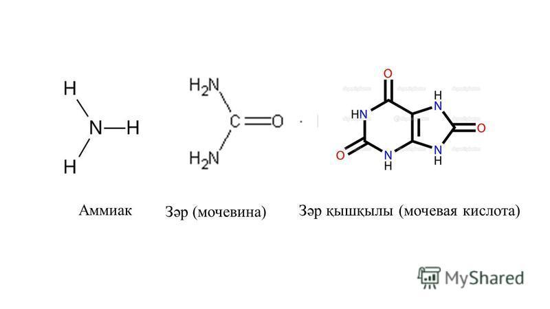 Аммиак Зәр қышқылы (мочевая кислота) Зәр (мочевина)