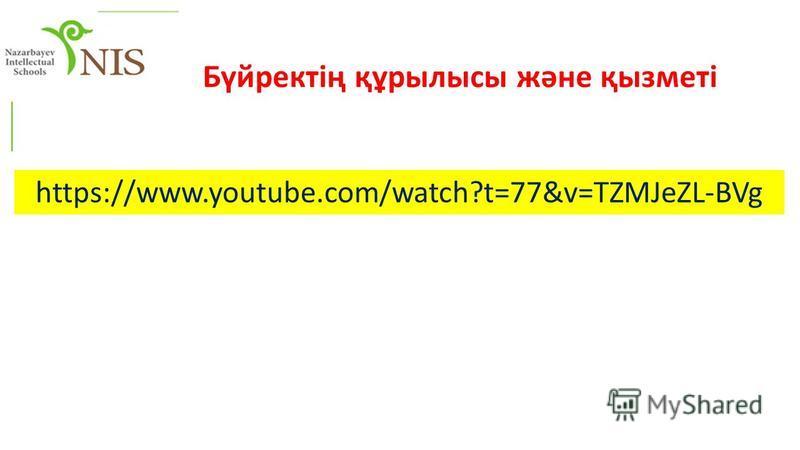 https://www.youtube.com/watch?t=77&v=TZMJeZL-BVg Бүйректің құрылысы және қызметі