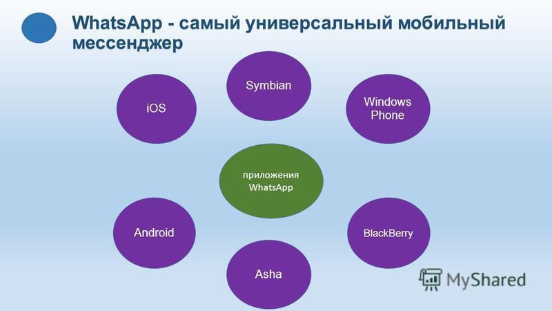 WhatsApp - самый универсальный мобильный мессенджер приложения WhatsApp iOS BlackBerry Android Windows Phone Symbian Asha