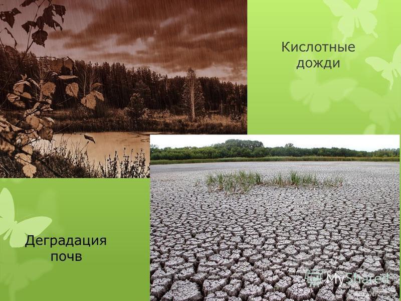 Кислотные дожди Деградация почв