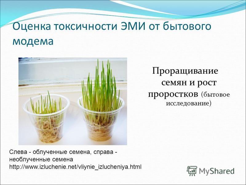 Оценка токсичности ЭМИ от бытового модема Проращивание семян и рост проростков (бытовое исследование) Слева - облученные семена, справа - необлученные семена http://www.izluchenie.net/vliynie_izlucheniya.html