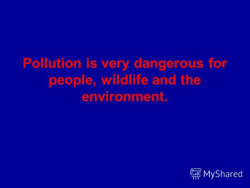 Pollution is very dangerous for people, wildlife and the environment.