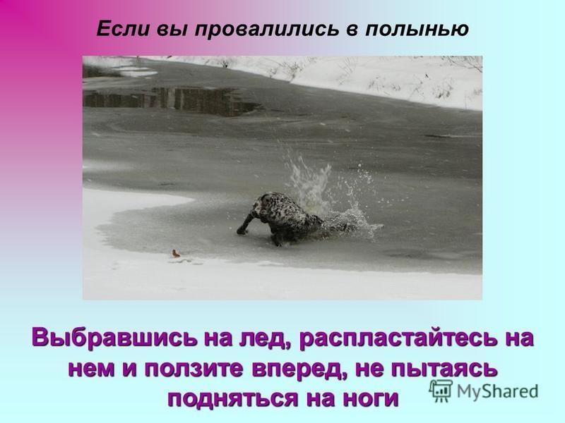 Если вы провалились в полынью Выбравшись на лед, распластайтесь на нем и ползите вперед, не пытаясь подняться на ноги