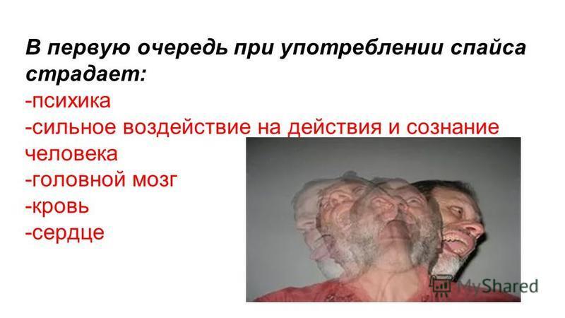 В первую очередь при употреблении спайса страдает: -психика -сильное воздействие на действия и сознание человека -головной мозг -кровь -сердце