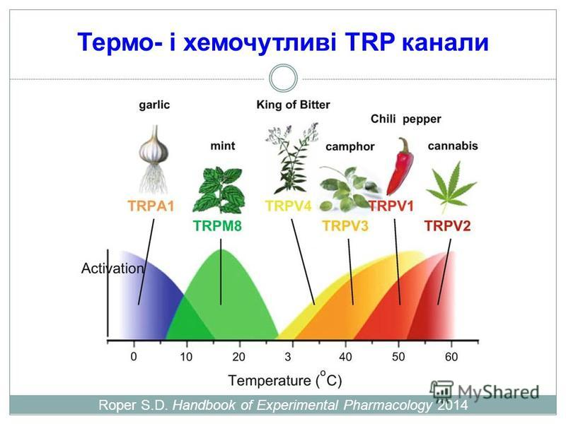 Термо- і хемочутливі TRP канали Roper S.D. Handbook of Experimental Pharmacology 2014