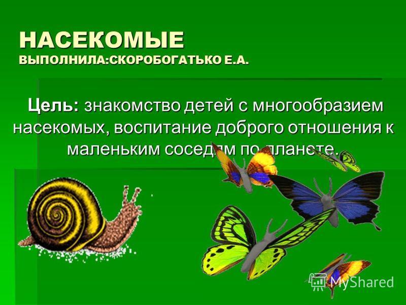 НАСЕКОМЫЕ ВЫПОЛНИЛА:СКОРОБОГАТЬКО Е.А. Цель: знакомство детей с многообразием насекомых, воспитание доброго отношения к маленьким соседям по планете. Цель: знакомство детей с многообразием насекомых, воспитание доброго отношения к маленьким соседям п