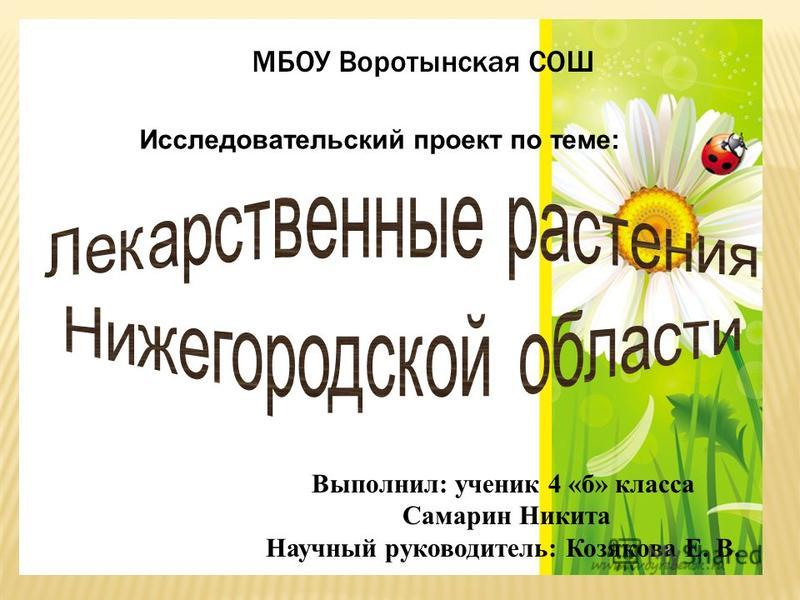 МБОУ Воротынская СОШ Выполнил: ученик 4 «б» класса Самарин Никита Научный руководитель: Козякова Е. В. Исследовательский проект по теме: