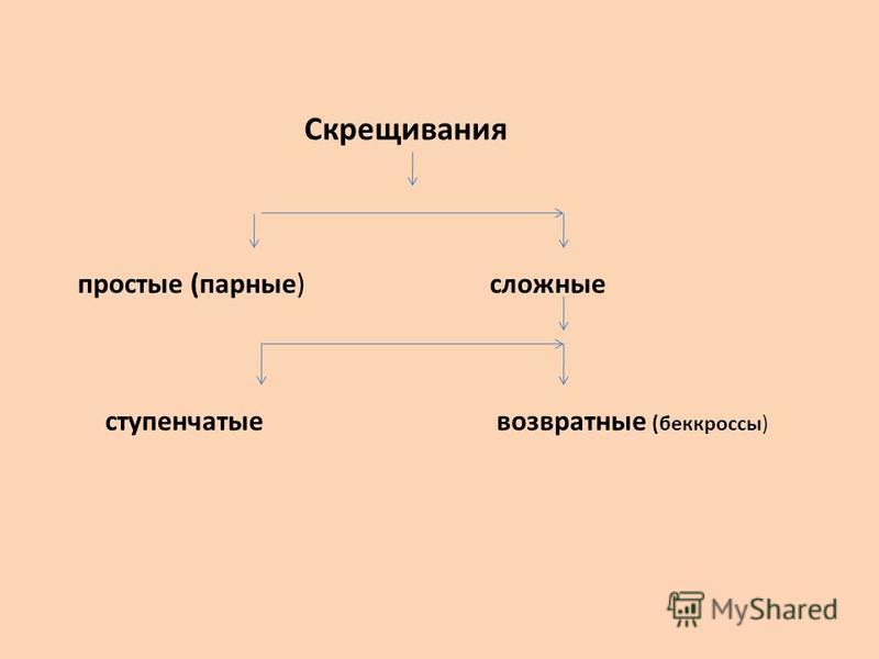 Скрещивания простые (парные)сложные ступенчатыевозвратные (беккроссы)