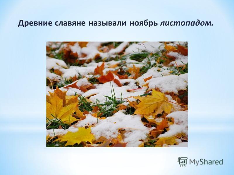 Древние славяне называли ноябрь листопадом.