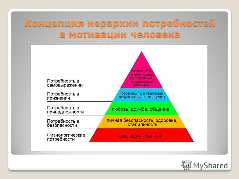 Концепция иерархии потребностей в мотивации человека