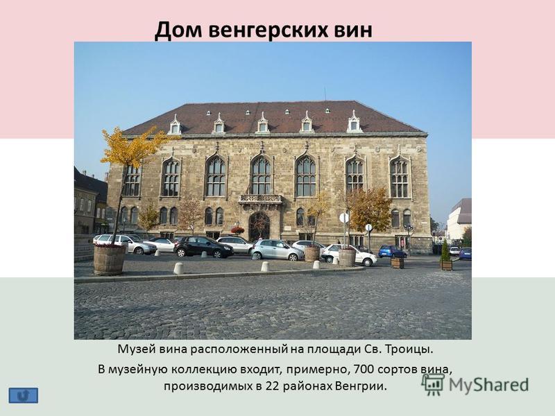 Дом венгерских вин Музей вина расположенный на площади Св. Троицы. В музейную коллекцию входит, примерно, 700 сортов вина, производимых в 22 районах Венгрии.
