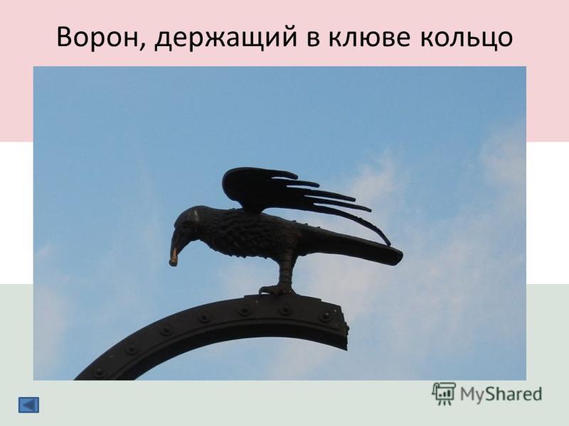 Ворон, держащий в клюве кольцо