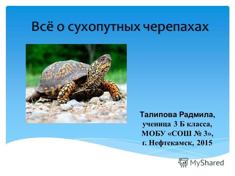 Всё о сухопутных черепахах Всё о сухопутных черепахах Талипова Радмила, ученица 3 Б класса, МОБУ «СОШ 3», г. Нефтекамск, 2015
